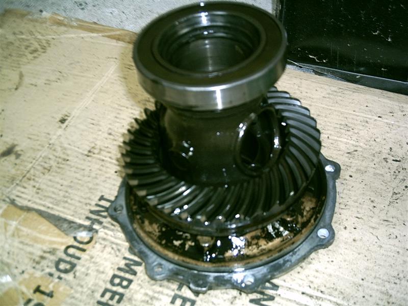 bv22-medium--18f4641.jpg