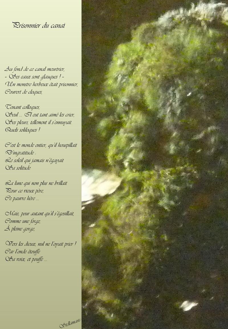 Prisonnier du canal / / Au fond de ce canal meurtrier, / – Ses eaux sont glauques ! – / Un monstre herbeux était prisonnier, / Couvert de cloques, / / Tenant colloques, / Seul … Il eut tant aimé les crier, / Ses pleurs, tellement il s'ennuyait. / Quels soliloques ! / / C'est le monde entier, qu'il houspillait / D'ingratitude : / Le soleil qui jamais n'égayait / Sa solitude / / La lune qui non plus ne brillait / Pour ce vieux père, / Ce pauvre hère … / / Mais, pour autant qu'il s'égosillait, / Comme une forge, / À pleine gorge, / / Vers les dieux, nul ne l'oyait prier ! / Car l'onde étouffe / Sa voix, et pouffe … / / Stellamaris