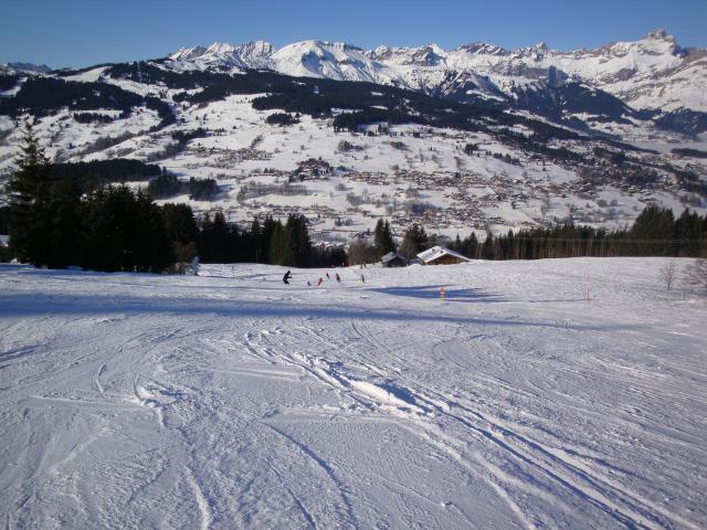 Grand bois; Megève Mont d'arbois Dsc00566-960698