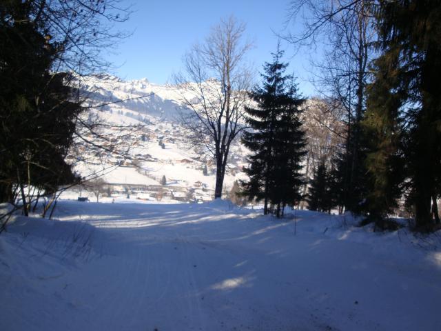 Grand bois; Megève Mont d'arbois Dsc00580-96085b