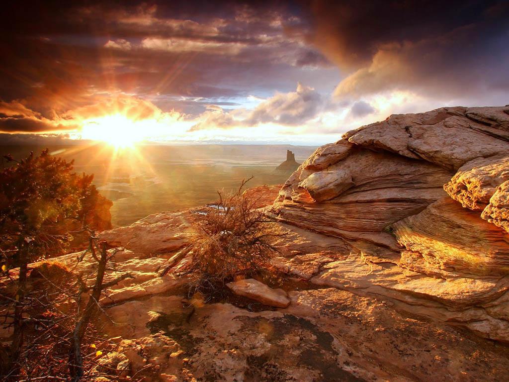 beau-coucher-de-soleil-paysage-flora