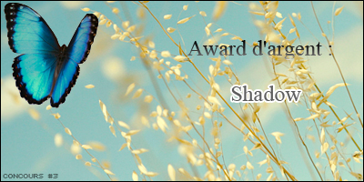 {003 Créations Gagnantes Shadow-4ad499