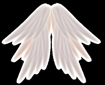 tubes ailes 28171343-1001a77