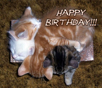 Les anniversaires Happybirthdayiuh-cc845c