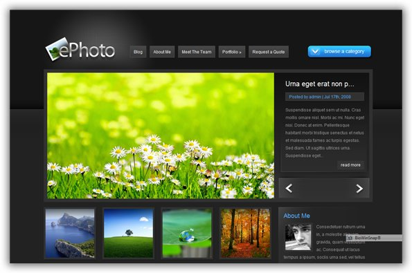 ePhoto ElegantThemes Premium WordPress Theme