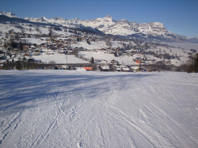 Grand bois; Megève Mont d'arbois Dsc00581-960870
